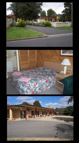 Ace Swan Motel - Accommodation VIC