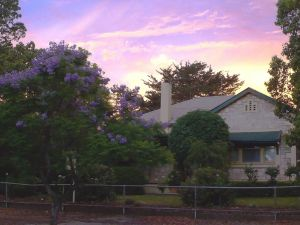 Angaston Rose BB - Accommodation VIC