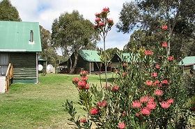 Derwent Bridge Chalets and Studios - Accommodation VIC