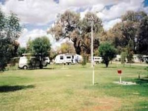 Morgan Riverside Caravan Park - Accommodation VIC