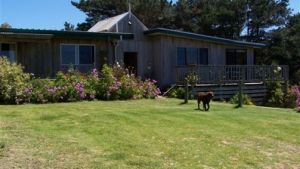 Clifton Beach Lodge - Accommodation VIC