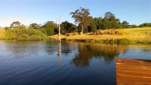 Cygnet Park Country Retreat - Accommodation VIC
