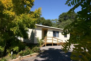 Millicent Hillview Caravan Park - Accommodation VIC
