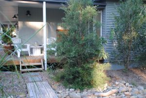 Native B and B - Callala Bay - Accommodation VIC