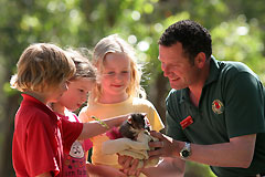 Cleland Wildlife Park - Accommodation VIC