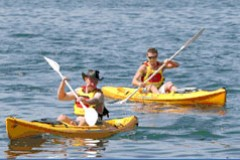 Manly Kayaks - Accommodation VIC