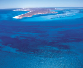 Dirk Hartog Island - Accommodation VIC