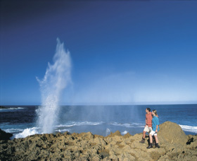 The Blowholes Carnarvon - Accommodation VIC