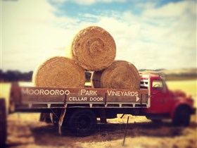 Moorooroo Park Vineyards - Accommodation VIC