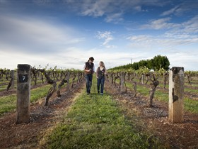 Coonawarra Wineries Walking Trail - Accommodation VIC