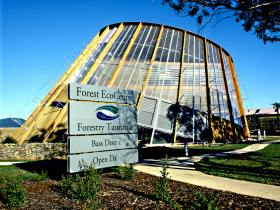 Forest EcoCentre - Accommodation VIC