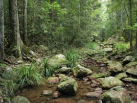 Amamoor State Forest - Accommodation VIC