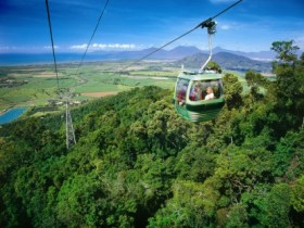 Skyrail Rainforest Cableway - Accommodation VIC