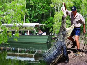 Hartleys Crocodile Adventures - Accommodation VIC