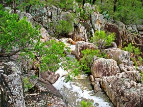 Crows Nest National Park - Accommodation VIC