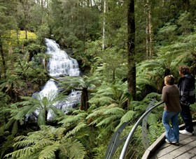 Great Otway National Park - Accommodation VIC