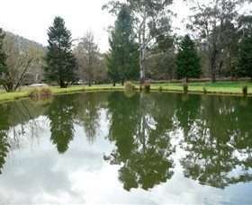 Mountain Fresh Trout and Salmon Farm - Accommodation VIC