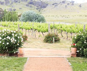 Brindabella Hills Winery - Accommodation VIC