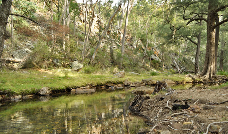 Capertee National Park - Accommodation VIC