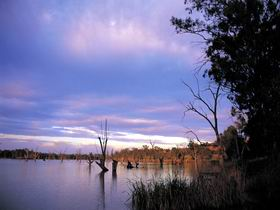 Loch Luna Game Reserve and Moorook Game Reserve - Accommodation VIC