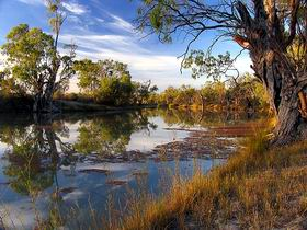 Murray River National Park - Accommodation VIC