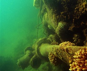 Wreck Diving at Magnetic Island - Accommodation VIC
