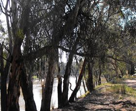 Mia Forest Drives Narrandera - Accommodation VIC