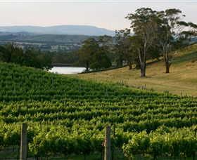 Granite Hills Winery - Accommodation VIC