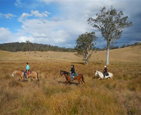 Chapman Valley Horse Riding - Accommodation VIC
