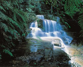 Leura Cascades - Accommodation VIC