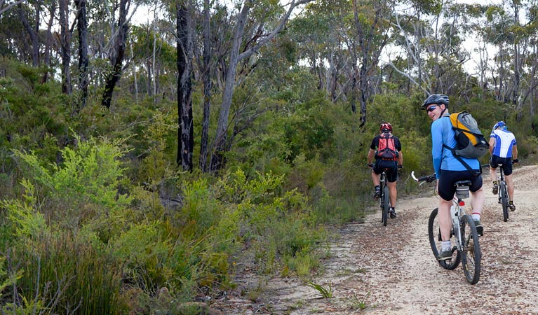 McMahon's Point ride - Wentworth Falls - Accommodation VIC