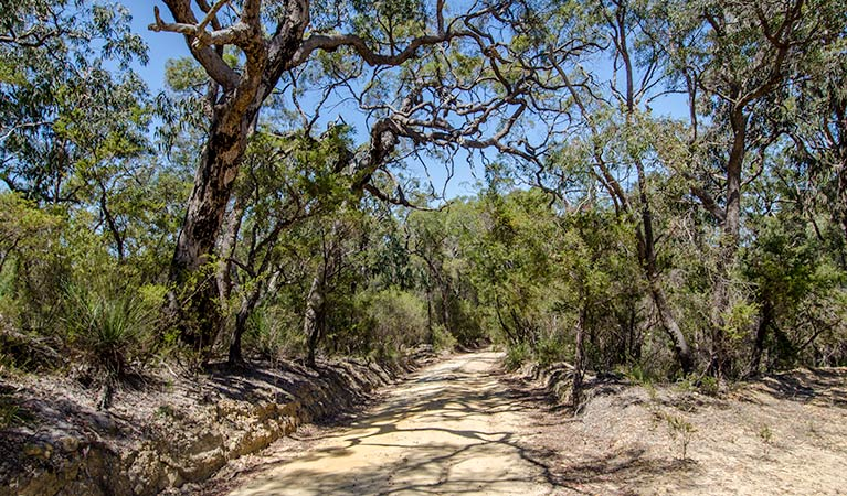 Howes trail - Accommodation VIC