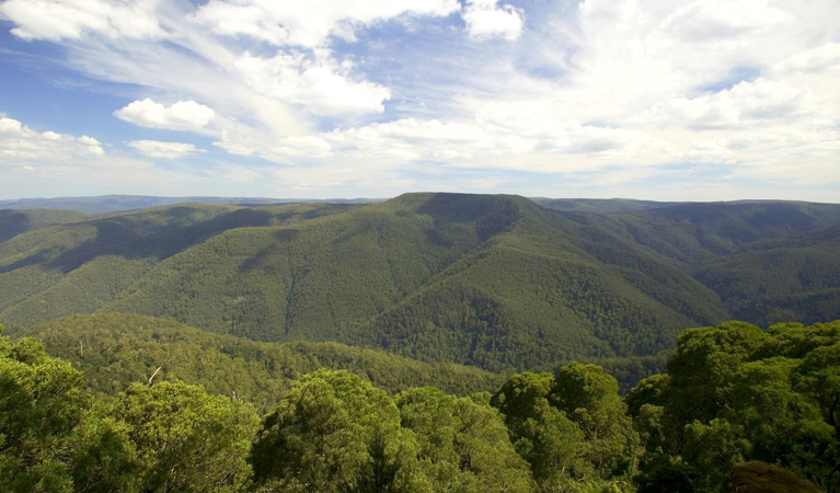 Barrington Tops National Park - Accommodation VIC