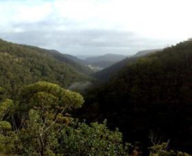 Nattai Gorge Lookout - Accommodation VIC