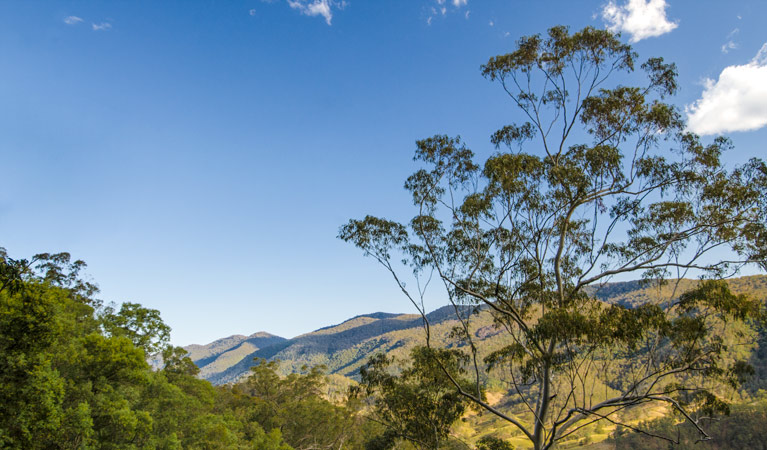 Woko National Park - Accommodation VIC
