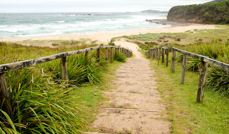 Pretty Beach to Durras Mountain walking track - Accommodation VIC