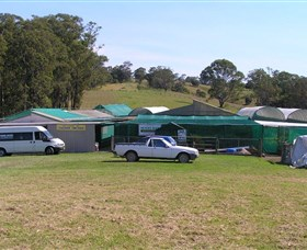 Tinonee Orchid Nursery - Accommodation VIC