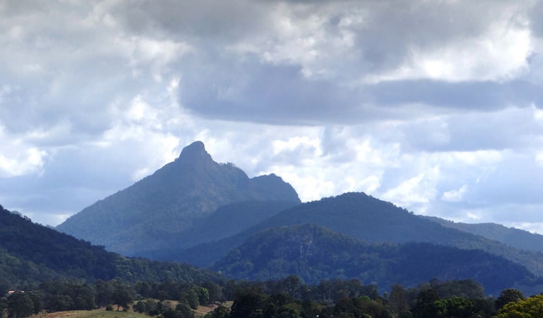 Wollumbin National Park - Accommodation VIC