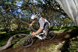 All Terrain Cycles - Accommodation VIC
