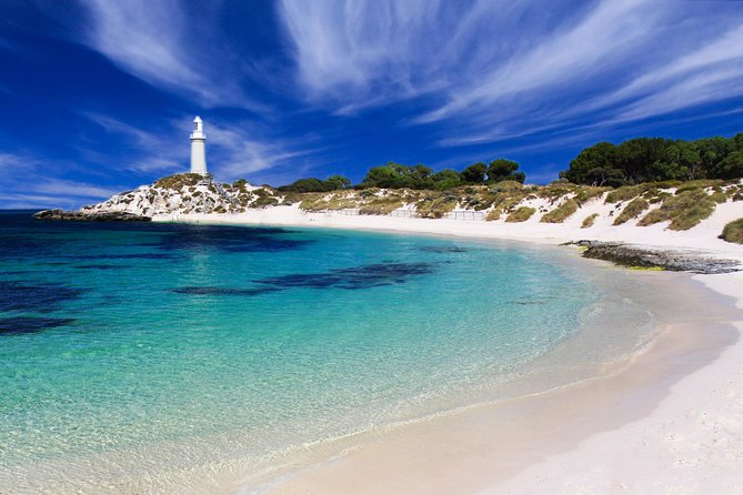 Rottnest Island Grand Tour Including Lunch and Historical Train Ride - Accommodation VIC