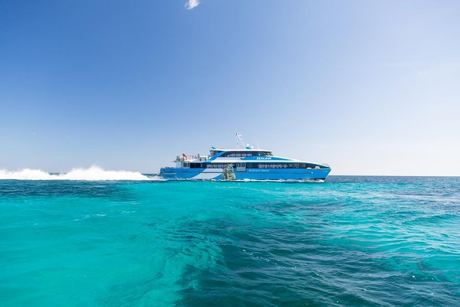 Fremantle to Rottnest Island Roundtrip Ferry Ticket - Accommodation VIC