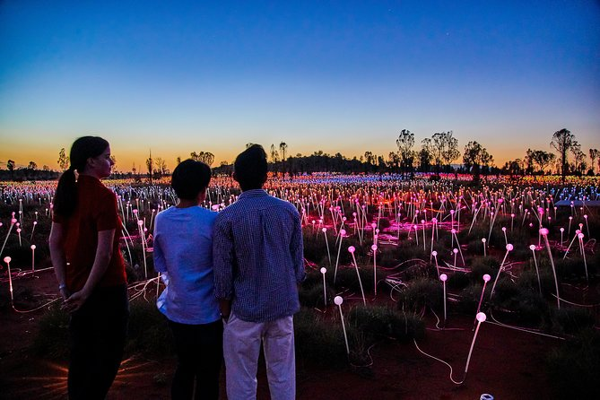 Uluru Field of Light Sunrise Tour - Accommodation VIC