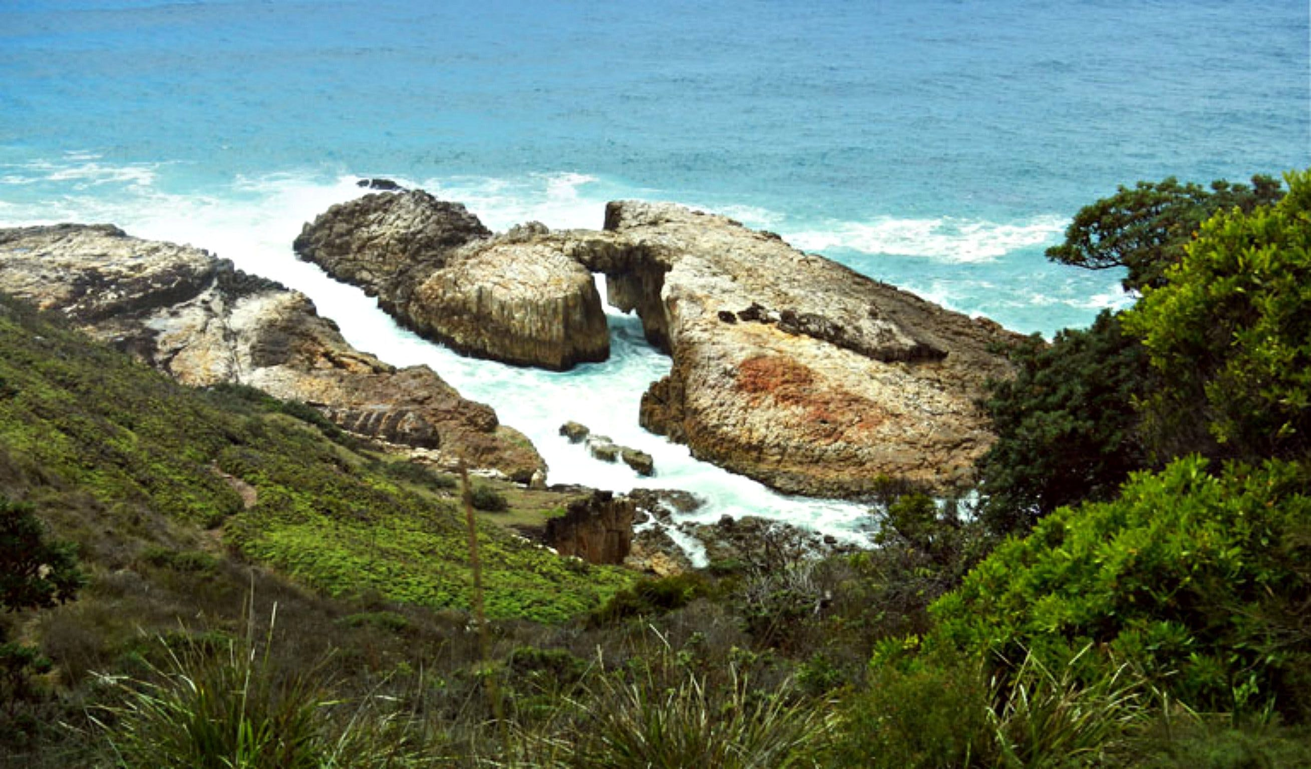 Diamond Head Loop Walk - Accommodation VIC