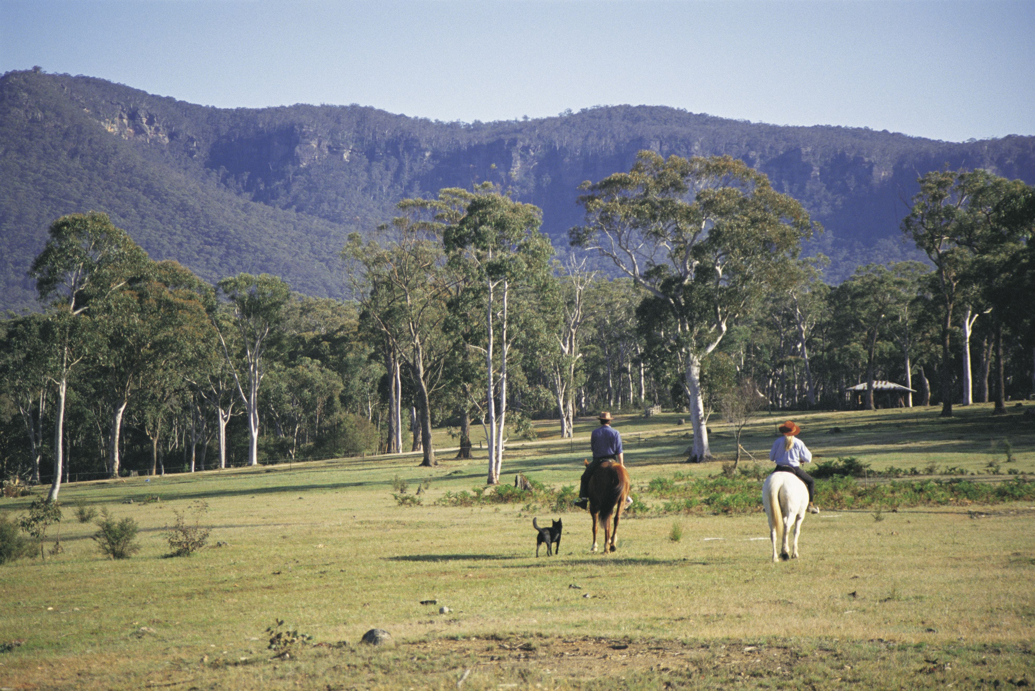 Megalong Valley - Accommodation VIC