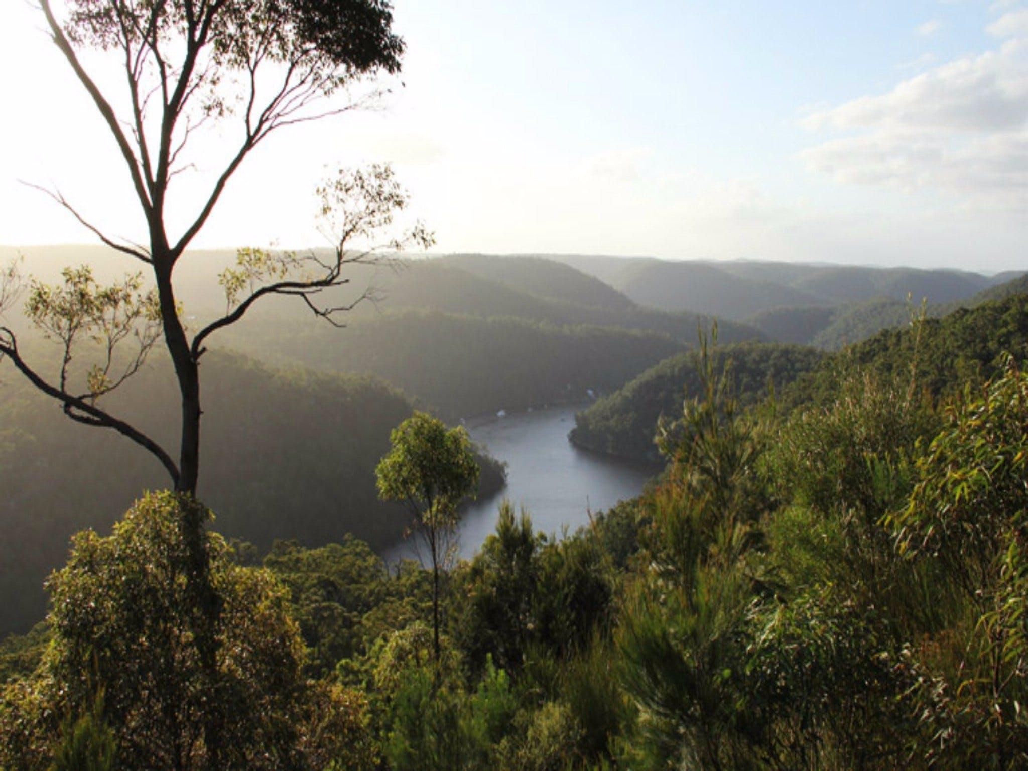 Berowra Valley National Park - Accommodation VIC