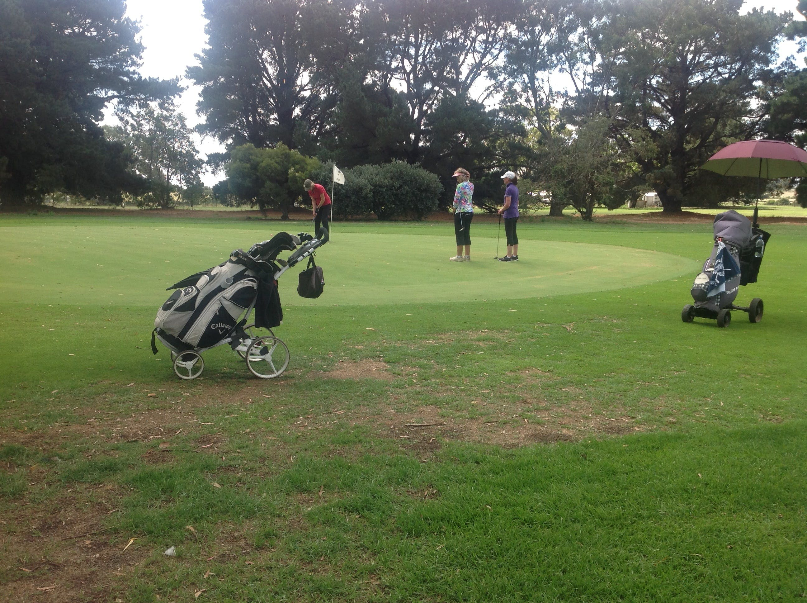 Mortlake Golf Club - Accommodation VIC