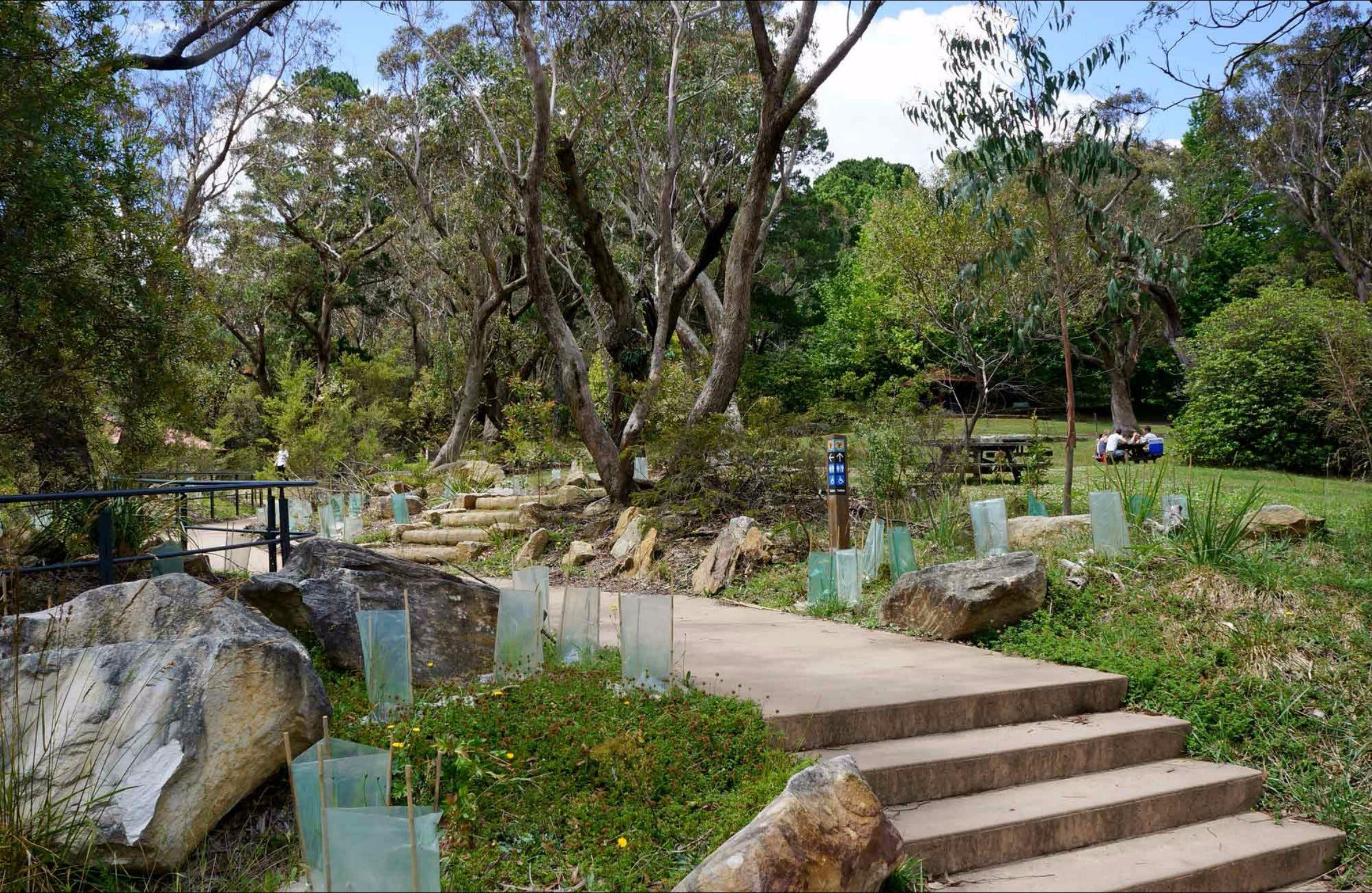 Wentworth Falls picnic area - Accommodation VIC
