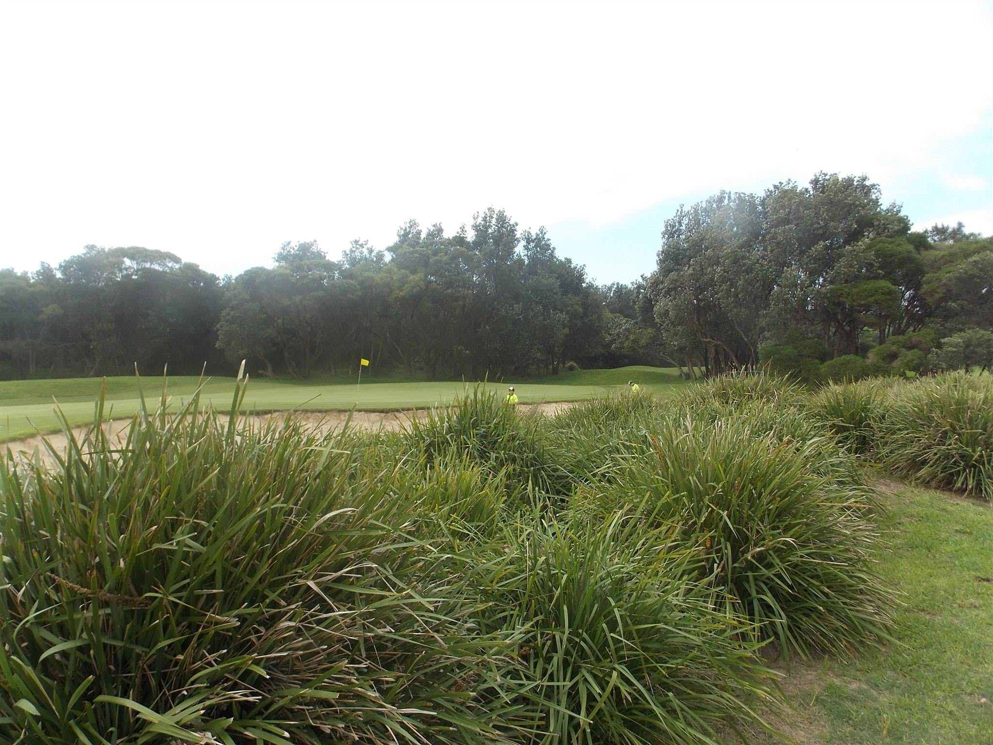 Shoalhaven Heads Golf Club - Accommodation VIC