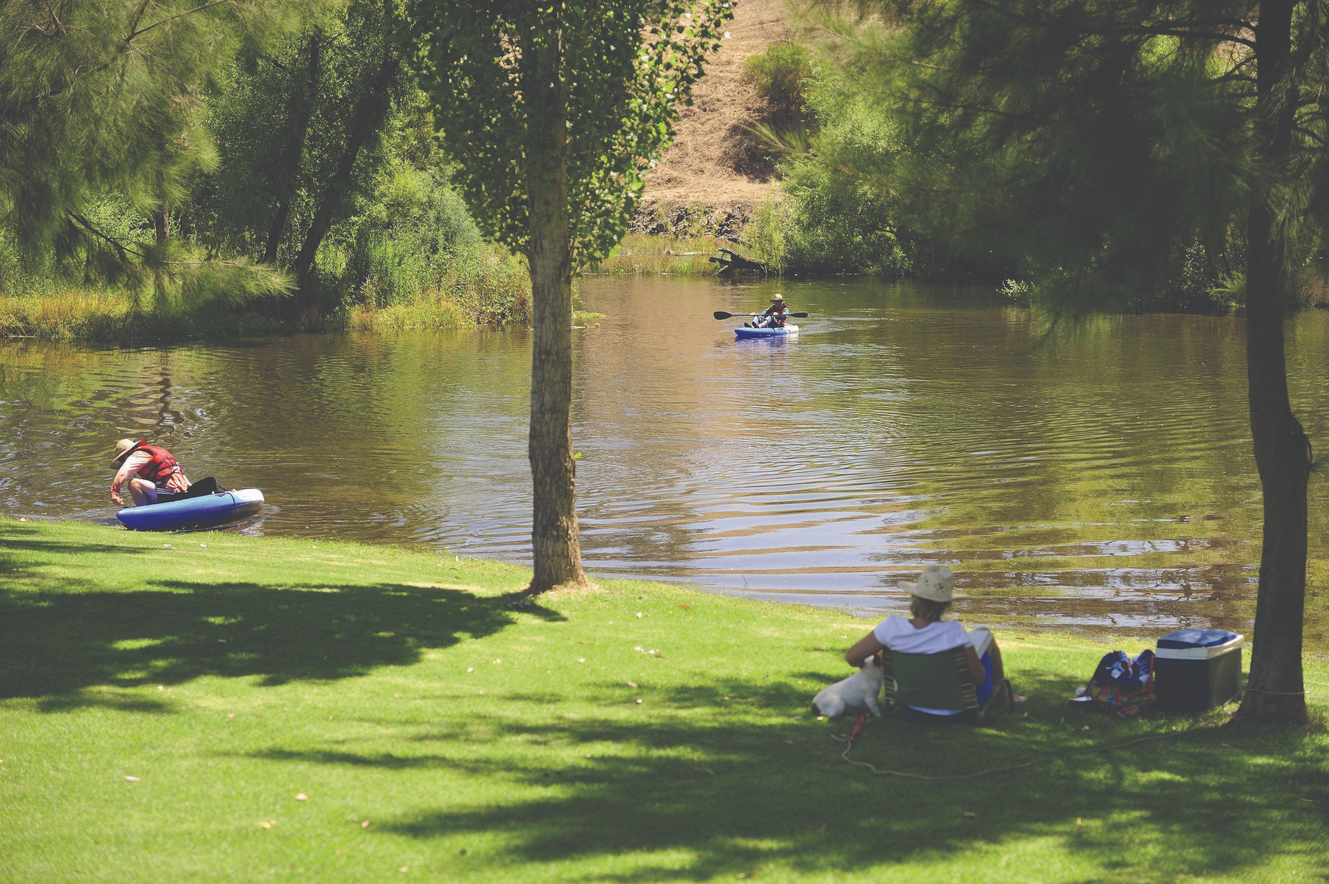 The Lions Junction Park - Tumut - Accommodation VIC