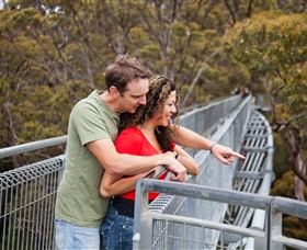 Valley of the Giants Tree Top Walk - Accommodation VIC